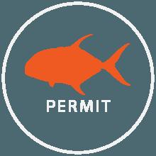 permit fish icon